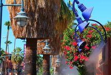 Explores Palm Springs CA