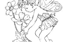 Fairies for Paula?