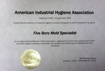 Mold Certifications / Five Boro Mold Specialist Certifications from Indoor Air Quality and Mold Associations