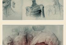 { Sketchbook / Draft }