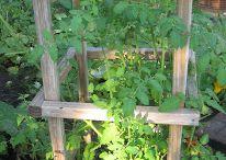 DIY easy gardening ideas