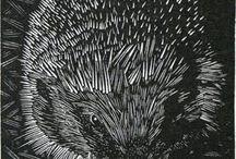 NV1 тема Ежи. Hedgehogs