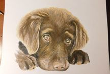 Artworks / portraits of various subjects done in graphite, chalk pastel or coloured pencil.
