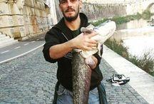 Catture di pesca in fiume