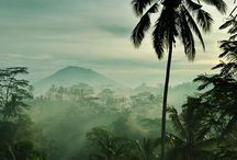 The natural landscape in Indonesia
