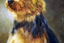 The Awesome Australian Terrier