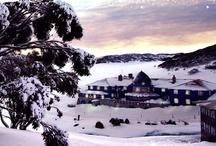 Snow Sports • Australian Adventure / by Visit Australia