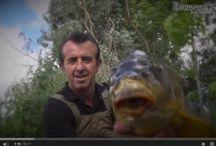 Carp Fishing Videos / http://carpfishinglakes.com/video-home/