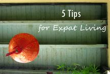 Expat Life / The best expat-related pins across Pinterest