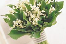 wedding bouquet : S P R I N G / by Pretty Wedding