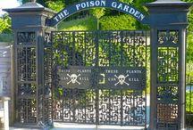 Lugares que visitar plantas