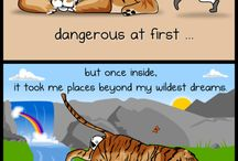 Random funny stuff / Just random funny things / by Gid Dinosaur