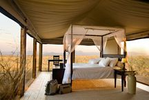Glamping and camp spots to ponder