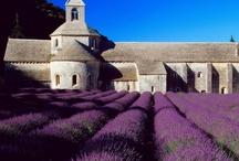 Levande en Provence / Krasa Provance.......