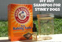 Pet DIY Hygiene Products