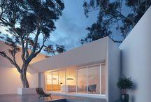 Arbre intégré à une terrasse