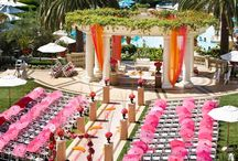 Wedding Venues / Local and exotic wedding locations.