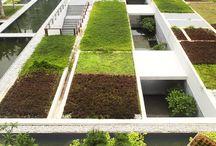 Gardens / Landscape and gardens