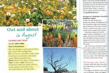 Namaquland Flowers
