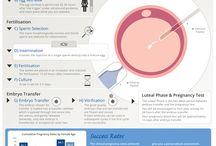 IVF/ICSI