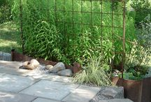 ryan st garden