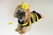 Ideer til hunden/bikkja / Tøj/klær til hunden med mere