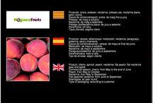 Noguera Fruits SAT 1405 / Cooperativa de Fruita de Torrelameu