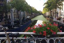 Delft - Netherlands