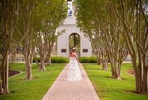 Wedding Photography / by Emily Gordon
