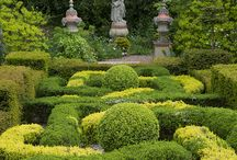 Topiary, Parterres and Knot Gardens / Topiary, Parterres, knot gardens and formally pruned hedges