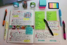 Lindo estudio
