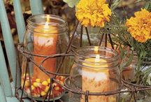 Fall Decor / by Suzette Brown