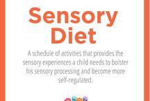 Sensory Diet Support / Explained