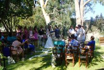 Garden weddings / Our new ceremony venue the Eucalyptus park a lovely park offered at Vasilias grounds for wedding ceremonies