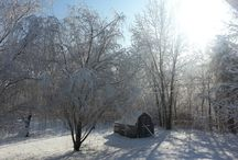 The beauty of winter!