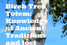 Plant Totems / We can learn much from the plants around us including messages or medicines for our spiritual growth.