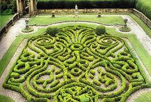 Heavenly Gardens / by Bellissima Kids