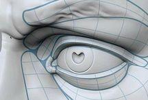 anatomia rzeźbiarska