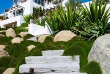 steep garden