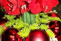 Christmas Decorating by Apple Blossoms Floral Designs / Christmas and Holiday Decorating by Apple Blossoms Floral Designs, Tampa, FL