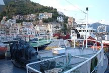Cetara - Amalfi Coast (Just 25 min. from the B&B) / #cetara #amalficoast #amalfi #italy #pompei #hotelamalfi #faunopompei #travel #sea #borghi http://www.bbfauno.com/eng/what-you-see/amalfi-coast.html Tutte le fotografie che troverete presenti qui, sono di proprietà degli autori , alcune informazioni provengono dalla rete. Se qualcuno notasse qualche particolare coperto da © copyright (a noi sfuggito) o simili, è pregato di comunicarlo con la massima urgenza, provvederemo immediatamente alla sua rimozione. / by B&B Pompei Il Fauno