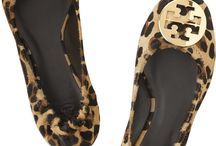 Leopard / Reminders that a Leopard CAN change its spots! http://dailyhap.com/articles/a-leopard-can-change-its-spots