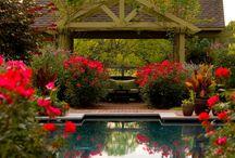 06.Red Gardens