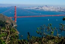 San Francisco's Run-Away Hearts