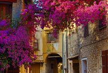 Ruas e casas charmosas