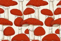 mushrooms<3