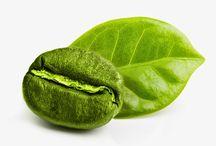 Perfect Green Coffee Bean / Perfect Green Coffee Bean @ sonofresco.com