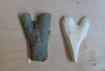 Wood small craft