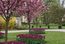 Istutusalueita -Garden beds