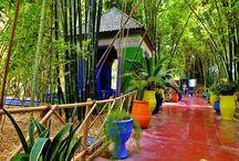 Les plus beaux jardins du monde / Les Jardins® vous fait découvrir les plus beaux jardins à travers le monde.